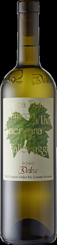 Vini & Distillati Angelo Delea SA Grappa Vallemaggia di uva Americana
